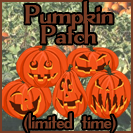 Pumpkin Patch (for a limited time)