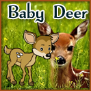 Baby-Deer-Farm-Town-Free-Gift-The-Facegamer-Facebook-Game